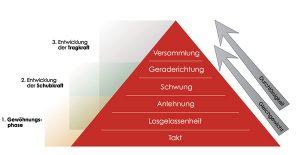 Skala_der_Ausbildung